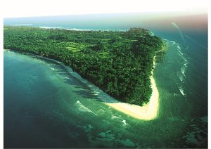 Andaman and Nicobar Islands, Beaches