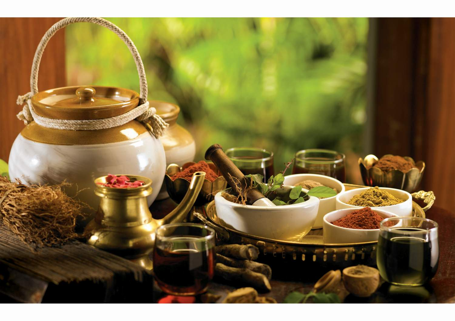 Ayurveda Utensils, Wellness