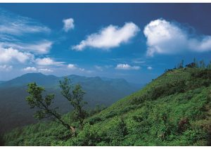Coorg, Karnataka, South India