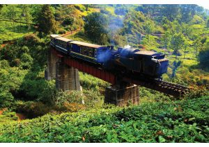 Railways- Nilgiri Railway, Tamil Nadu, World Heritage Sites